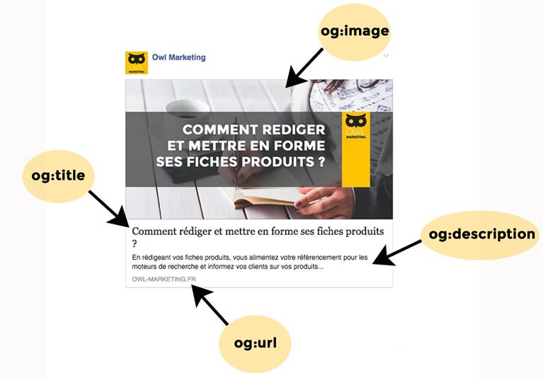 Réseaux sociaux : Partage d'une publication Facebook d'un article Owl Marketing